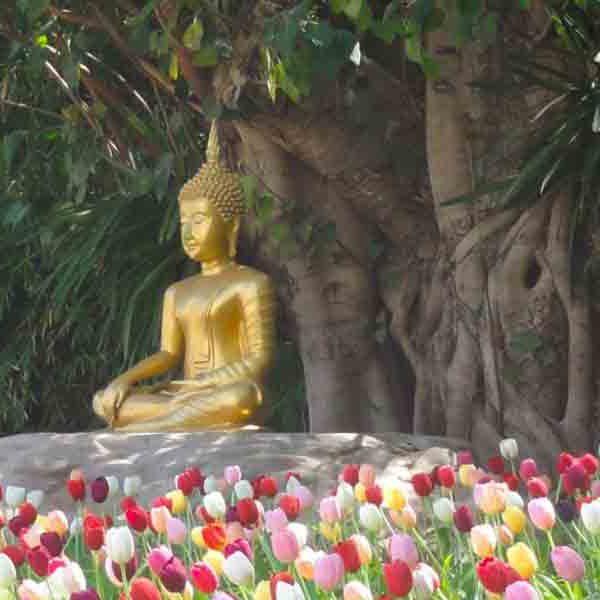 Gran_Tour_Thailandia
